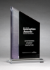 Digitally Printed Zenith Award Acrylic Award Trophy Metal