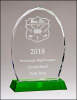 Green Crystal Faceted Edge Award All Purpose Crystal