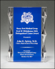 Faceted Edge Acrylic Corporate Acrylic Awards Trophy