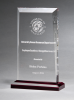 Apex Series Award with Red Highlights Corporate Acrylic Awards Trophy