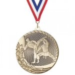 Value Line Karate Medal Achievement Awards