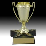 Star Base Trophy with Cup Achievement Awards
