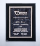 Black High Lustr Plaque with Gray Marble Plate Award Plaques