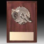 Participation Plaque B Hive Awards & Promotional Products | Acrylic | Crystal | Plaques | Trophies | Name Badges