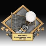 Volleyball Diamond Resin B Hive Awards & Promotional Products   Acrylic   Crystal   Plaques   Trophies   Name Badges