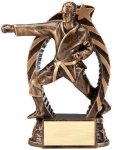 Bronze and Gold Award -Karate Male B Hive Awards & Promotional Products | Acrylic | Crystal | Plaques | Trophies | Name Badges