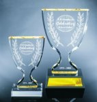 Trophy Cup Corporate Acrylic Awards Trophy