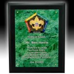 Acrylic Faceplate Plaque Marble Acrylic Awards Trophy
