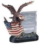 Eagle On Flag With Glass Resin Trophies