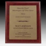Plaque with Leatherette Faceplate Sales Awards