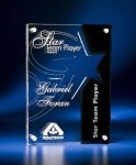 Star Cutout Clear and Black Acrylic Award Sales Awards