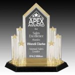 Star Acrylic Trophy Award with Engraved Center Piece Star Acrylic Award Trophy