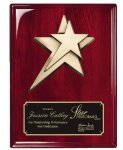 Rosewood Piano  Finish Plaque Star Awards